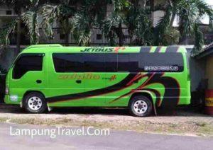 Travel Tomang Jelambar ke Pringsewu Lampung