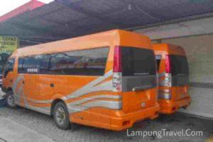 Travel Pulogadung Lampung Terbaru