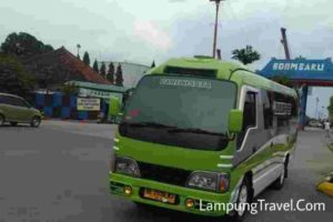 Travel Lampung Cempaka Putih - WA 082117864848