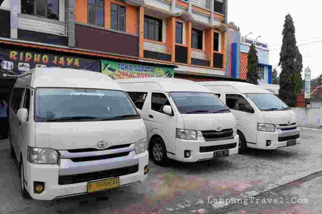 Travel Lampung Jaka Setia