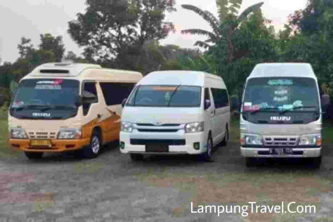 Info Travel Lampung Legok