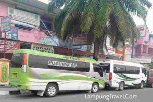 Agen Tanjung Karang Tangerang