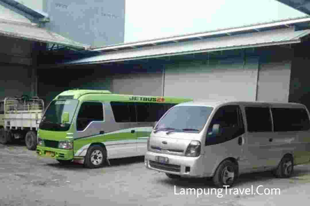 Travel Natar Jakarta Terkini 2020